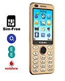 GAMMA S10 Dual-Camera 2.8-Inch Big Screen SIM-Free Mobile Phone - 2200Mah Big Battery Long Time Standby, 9.7mm Ultra-thin, Speed Dial, Dual-SIM Quad-Bands GSM Worldwide Mobile Phone with Bluetooth (Golden)