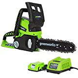 Greenworks Tools 2000007-a Battery Powered Chainsaw - 24V