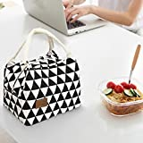 Wanshop Lunch Boxes for You Fashion portable practical Thermal Insulated Tote Picnic Lunch Cool Bag Cooler Box Handbag Pouch (B)