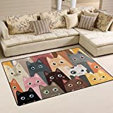 JSTEL INGBAGS Super Soft Modern Cartoon Cats Area Rugs Living Room Carpet Bedroom Rug for Children Play Solid Home Decorator Floor Rug and Carpets 31 x 20 Inch