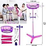 Kids Karaoke Machine 2 Mic Adjust. Stand Music Play Toy Set Xmas Gift (Pink)