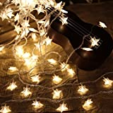 Pingxia Star Led String Lights,Starry Copper Wire Fairy String Lights Warm White Decorative Rope Lights for Christmas Party Wedding Garden Festival Indoor/Outdoor[6M,40Leds]