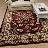 Extra Large Classic Oriental Persian Style Floral Traditional Rug / Mat, Red - 160 x 230cm by eRugs
